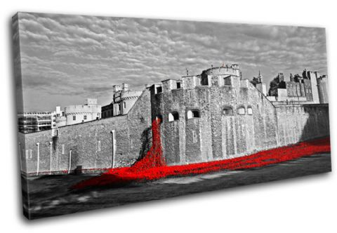 Tower of London Poppies City - 13-2240(00B)-SG21-LO